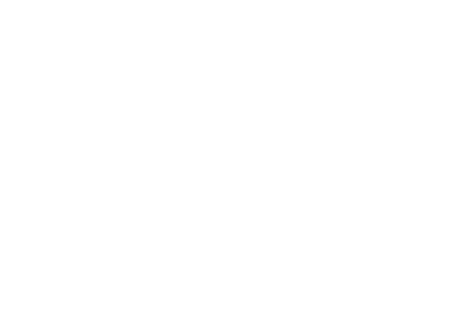 graph to 400 branches in 2001
