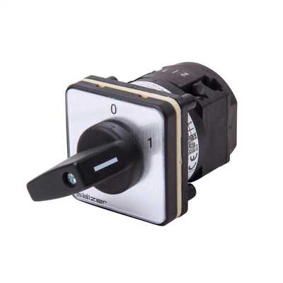 20A 2 Pole Panel Mounting On / Off Switch IP66